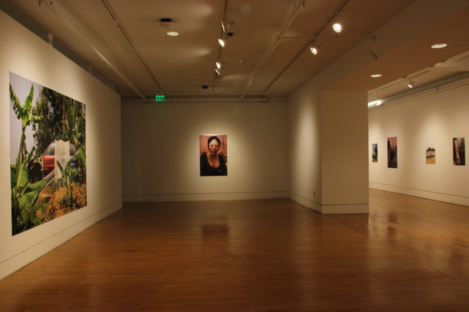 Visual Arts - Lewis Center for the Arts